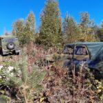 Volvo c303 ja Uaz 315126, 2